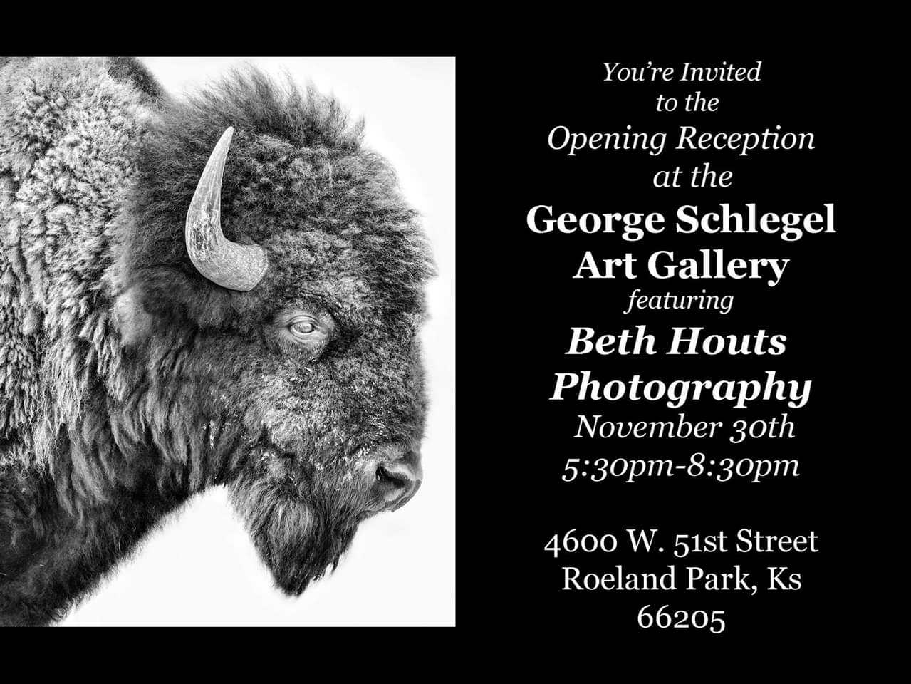 Beth Houts Art Reception