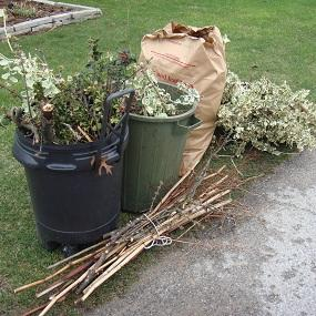 yard-waste-bundles
